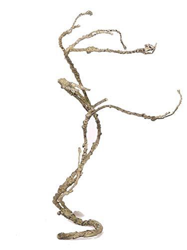 PARC Network - Künstlicher Korkenzieher, grün-braun, 40-75cm - Zweig Deko - Korkenzieherweide Künstlich - Korkenzieher AST Deko - Kunstzweig
