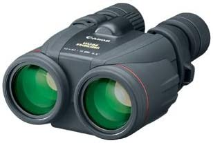 Canon 10×42 IS review for Birdwatchers & Stargazers