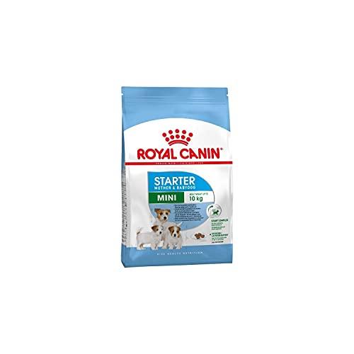 Royal Canin - Royal Canin Mini Starter Mother & Babydog - 240 - 3 KG.
