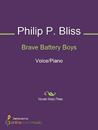 Brave Battery Boys (English Edition)