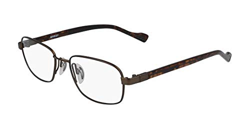 Eyeglasses FLEXON AUTOFLEX 117 210 Brown