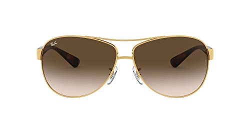 Ray-Ban 0RB3386 001/13 67 Montures de Lunettes, Or (Gold/Brown Gradient), Homme