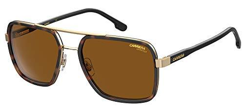 Carrera Gafas de sol 256 / S J5G / 70 Gafas de sol Hombre color Havana marrón medida de la lente 58 mm