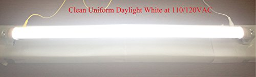 Fulight Easy-Installing T8 LED Tube Light, 24-Inch 10-Watt 6000K, F17T8, F18T8, F20T10, F20T12/CW, Double-End Powered Frosted Cover Fluorescent Replacement Bulb
