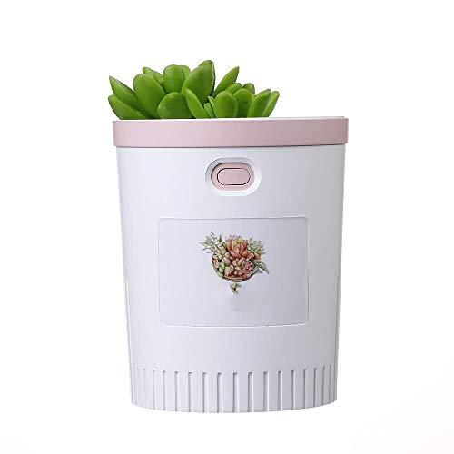 YYHSND Humidificador, Purificador De Aire Portátil USB Humidificador De Aire De Escritorio, Planta Suculenta Artificial Humidificador (Color : White)