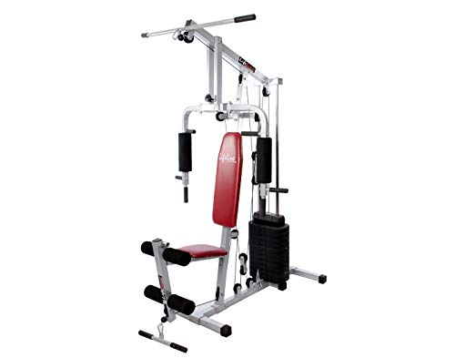 Lifeline Hg 002 Home Gym Square Other Machine All in one for Home use (Multicolor)