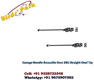 Veterinary Oral gavage Feeding Reusable Steel Tube Curved/Bent Oval Tip for Rat & Mice - 2 pcs …