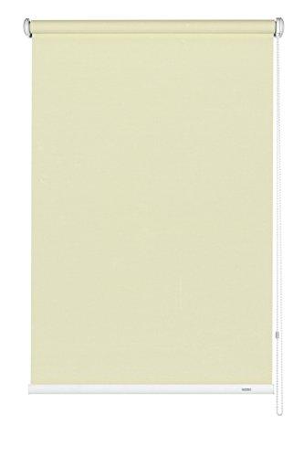 GARDINIA Tenda a rullo con catenella laterale, Installazione a parete, soffitto o nicchia, Trasparente, Opaca, Kit di montaggio incluso, Champagne, 52 x 180 cm (LxA), tessuto