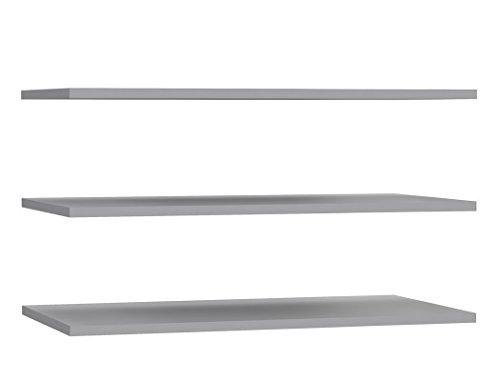 expendio 3X Einlegeboden Zander 8 grau 83x42 cm Zubehör für Schwebetürenschrank