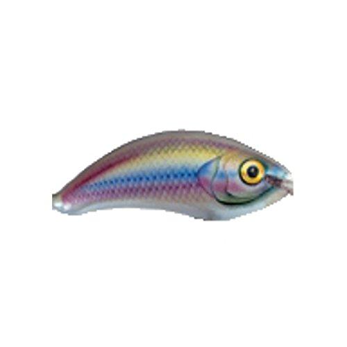 Ugly Duckling - Wobbler - Dekor Regenbogenforelle - Länge 4 cm - 2 Gramm - Schwimmend