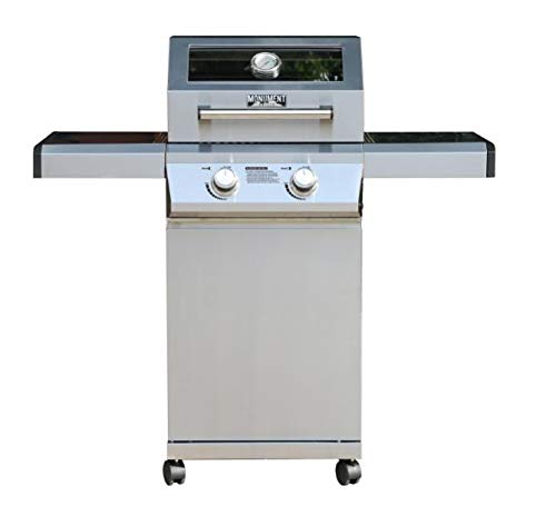 2-Burner Propane Gas Grill in Stainless with Clear View Lid and LED Controls Grills Propane