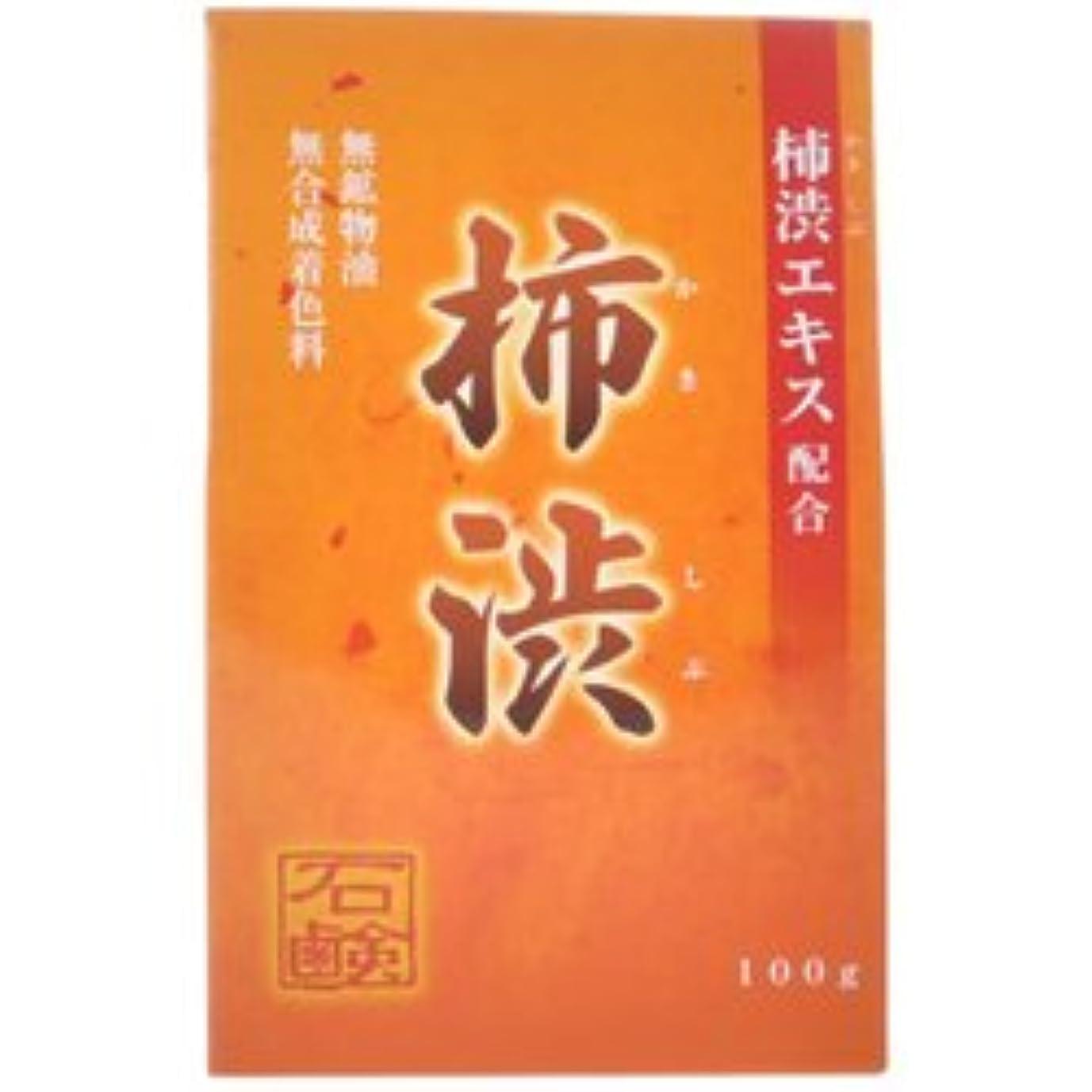 引き付けるテープすき【アール?エイチ?ビープロダクト】新 柿渋石鹸 100g ×3個セット