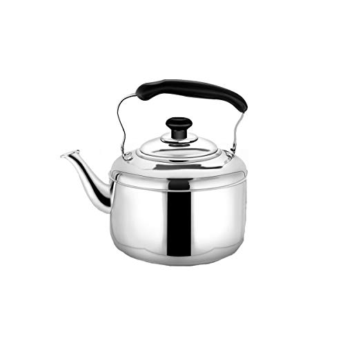 YMSH 304 Kettle Gas Thicken Stainless Steel Household Whistle Teapot Large Capacity Induction Cooker Gas Stove Kettle,Silver (Color : Silver, Size : 8L)