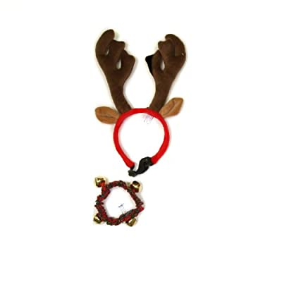 Outward Hound Holiday Bell Collar and Antler Combo Pack Wearable Christmas Accessories for Dogs