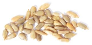 Sunflower Seeds Ranking TOP13 Roasted Salt -25Lbs No Tampa Mall