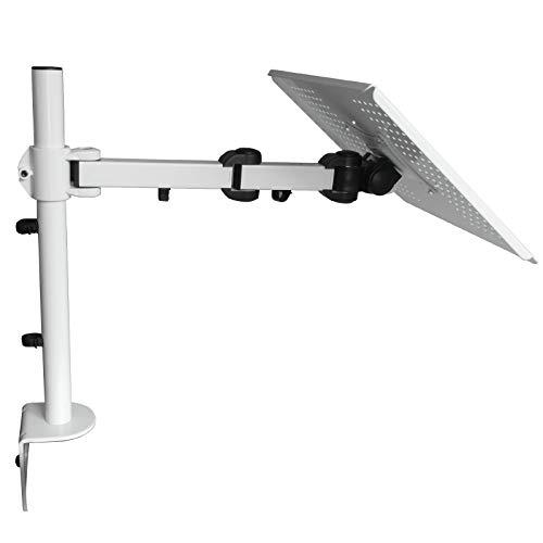DRALL INSTRUMENTS Tischhalterung Halterung für Laptop Notebook Netbook Tablet PC\'s Tisch Halterung Ständer in 3 Farben Modell: LT10VA, Farbe:Weiß