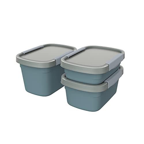 Rotho Clic Eco 3er-Set Frischhaltedosen, lebensmittelechter Kunststoff (PP) BPA-frei, blau/transparent, 1 x 0,8l + 1 x 1.5l + 1 x 2.2l, 3