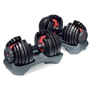 Bowflex SelectTech 552 Adjustable Dumbbells (Pair) with Mini Tool Box (fs)