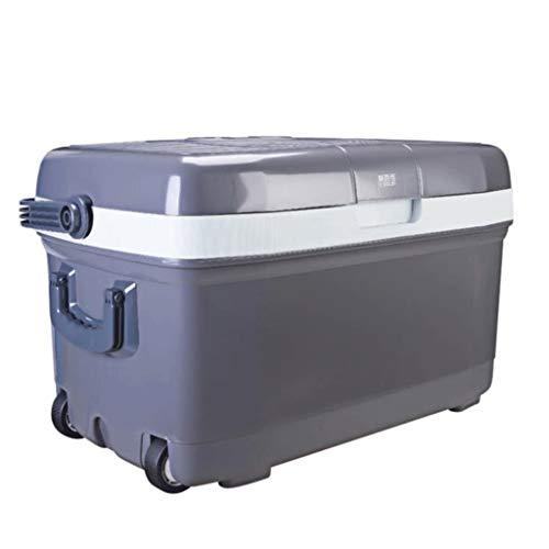 Q-HL Nevera Portátil, 45L Cool Box Refrigerator Cool & Warm Electric Cool Box, Dual Voltage Car Refrigerator 12V DC / 220V AC para automóvil y hogar