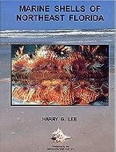 Marine Shells of Northeast Florida