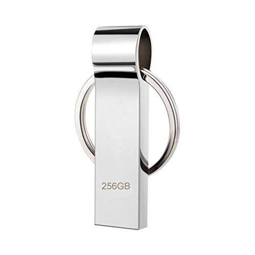 Dorypal Pendrive 256GB Chiavetta USB Metallo Flash Drive USB Impermeabile Stick Memory Con Portachiavi Portatile da Trasportare