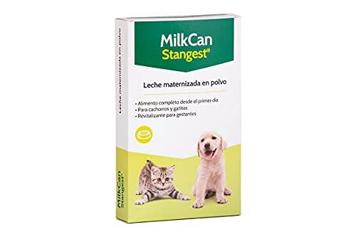 STANGEST Lait Milk-Can pour Chiots – 250 GR