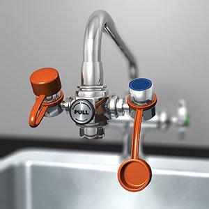 Discover Bargain G1100 EyeSafe Faucet-Mounted Eyewash (1 Each) - R3-G1100