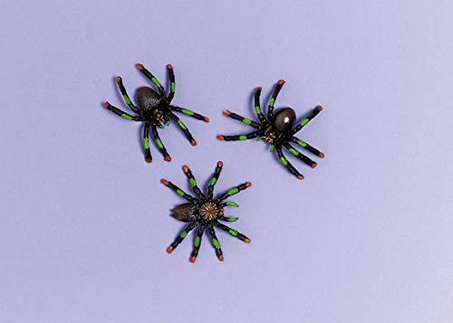 Amscan International 394231 Lot de 2 boîtes à dragées Motif araignée