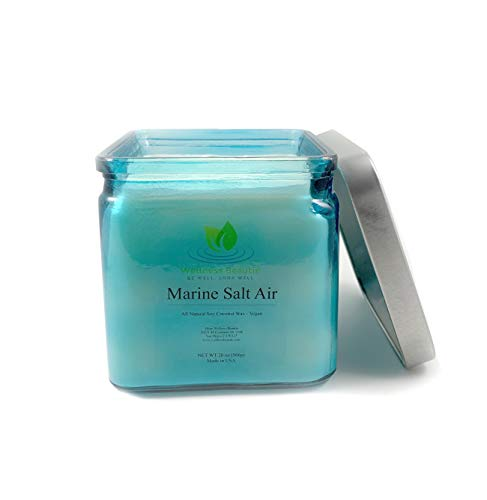 Marine Salt Air Candle - All Natural Soy Coconut Wax | Aromatherapy Relaxing Two Wick Large Candle for Well-Being | Candle with Seaweed Salt-Air Driftwood and Water Lily Fragrance| Vegan Candle