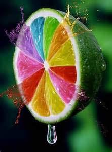 Große Förderung! Meyer Lemon Eßbares Obst Bonsai, Bonsai Lemon Tree Frische Pflanzen Gemüse Exotische Zitrusfrüchte, 20 PC/Beutel: 4