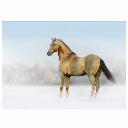 Koop een gratis wenskaart aanbieding - Blue Snow - Bay Horse in Winter Landscape