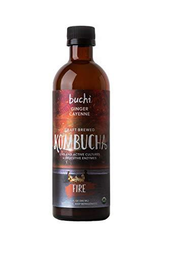 Buchi Kombucha Fire, Ginger & Cayenne, 12 Ounce (Pack of 6) (Best Of Kumar Sanu Hindi Webmusic)