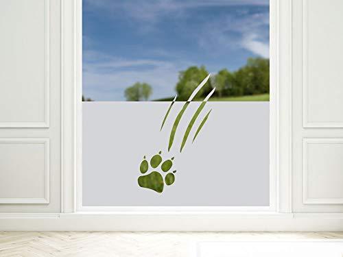 GRAZDesign Sichtschutzfolie Tatzen - Abdruck, lichtdurchlässige Fensterfolie, Matte Glasdekorfolie/Blickdicht / 80x57cm