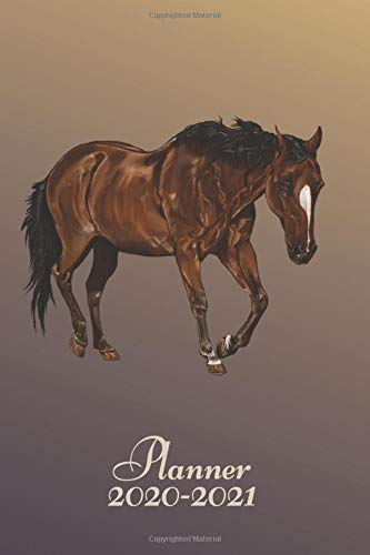 Planner 2020-2021: 2 Year Daily Weekly Monthly Calendar Planner Agenda Diary W/ Inspirational Quotes Horse Digital Art