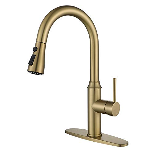 Gold Kitchen Faucet with Sprayer
