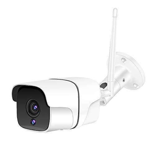 Cámara de Vigilancia Exterior Interior IP WiFi HD 1080P, IR Visión Nocturna...
