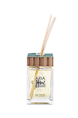 QC Terme Aria Torino 250 ml Art Edition, parfum d'ambiance avec diffuseur à bâtonnets, parfum frais, fleur et bois, fabriqué en Italie