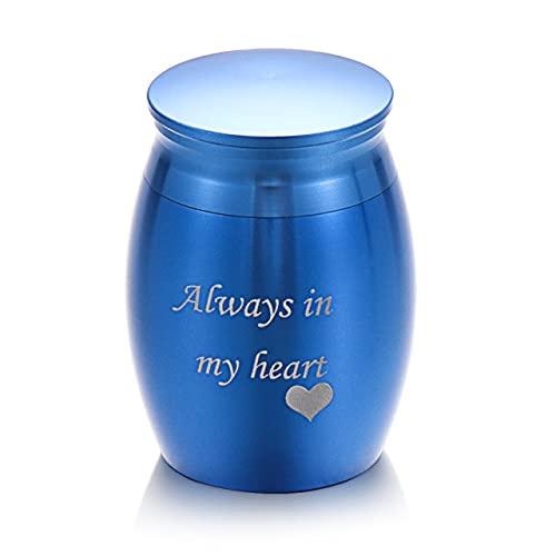 Mini urnas de cremación para mascotas de Metal, recuerdo para mascotas amado, aleación de aluminio, tapa roscada, soporte para cenizas, caja de almacenamiento conmemorativa para el hogar, azul