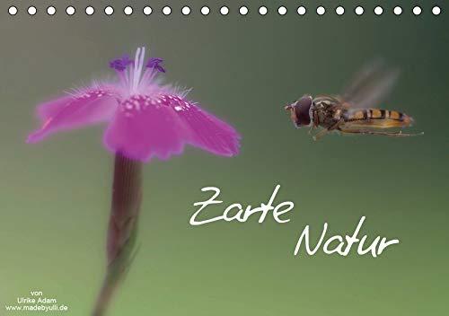 Zarte Natur 2020 (Tischkalender 2020 DIN A5 quer): Zarte Schönheiten unserer Natur (Monatskalender, 14 Seiten ) (CALVENDO Natur)