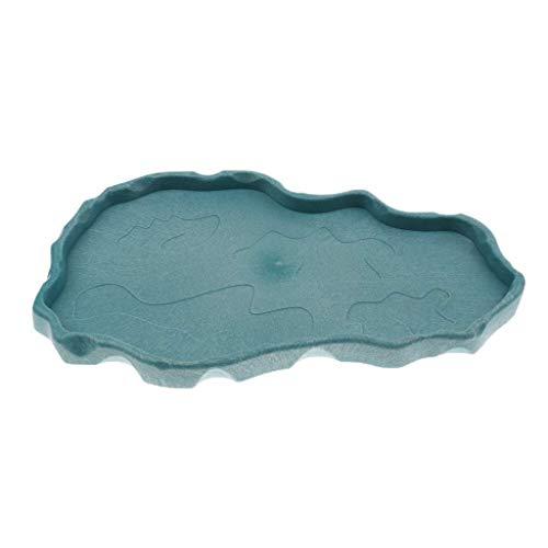 Tubayia Reptilien Futterschale Futternapf Reptiliennapf für Schildkröte, Eidechse, Frosch, Gecko, Spinne (Blau)