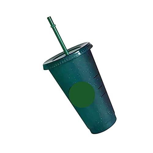 Taza De Paja De 700 Ml con Tapa Reutilizable Taza De Plástico Taza De Café Fría Regalo De Fiesta Family (Capacity : 700ml, Color : Rose Red)