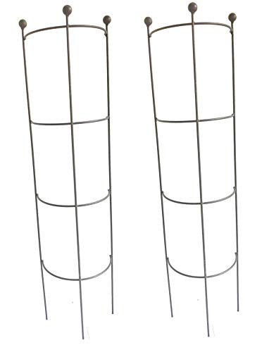 Ruddings Wood Set of 2 x Metal Tube Trellises - Drain Pipe Trellis - Semi Circle Downpipe Plant Supports