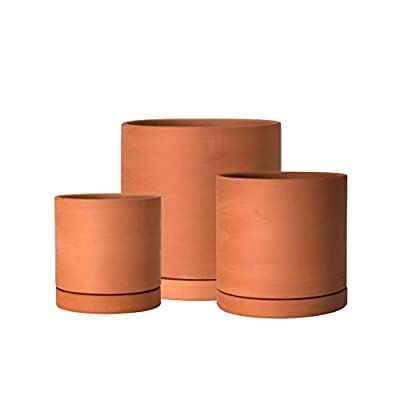 Set of 3 Terracotta Planter Pots, with Drainage Hole and Saucers, Round Cylinder Plants Pot, 4 Inch & 5 Inch & 6 Inch