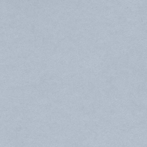 Canson 200040812 Iris Vivaldi glattes, farbiges Papier, A4, hellgrau 35