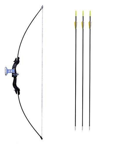 Iris Take Down Bow For Outdoor Hunting Practice Shooting Competition Archery Recurve Bow And Arrow Set, Carbon , Black