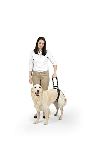 PetSafe CareLift Rear Support Harness - Lifting Aid with Handle and Shoulder Strap - Great for Pet Mobility and Older Dogs - Comfortable, Breathable Material - Easy to Adjust,Black,Large