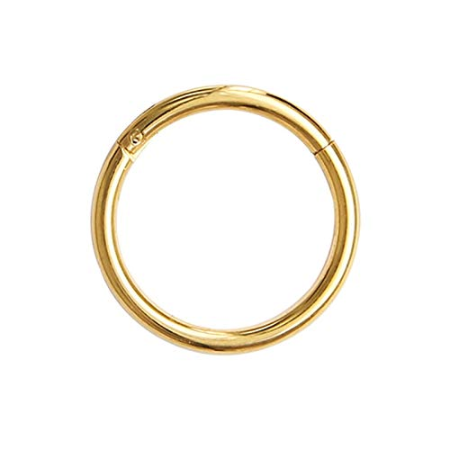 XYBH Timbre de Timbre Pesca con bisagras Anillo de Nariz en el Labio cartílago cartílago Espiral Cuerpo Piercing joyería Acero Anillo aro aro Anillo (Color : 1.2x12mm, Size : Gold)
