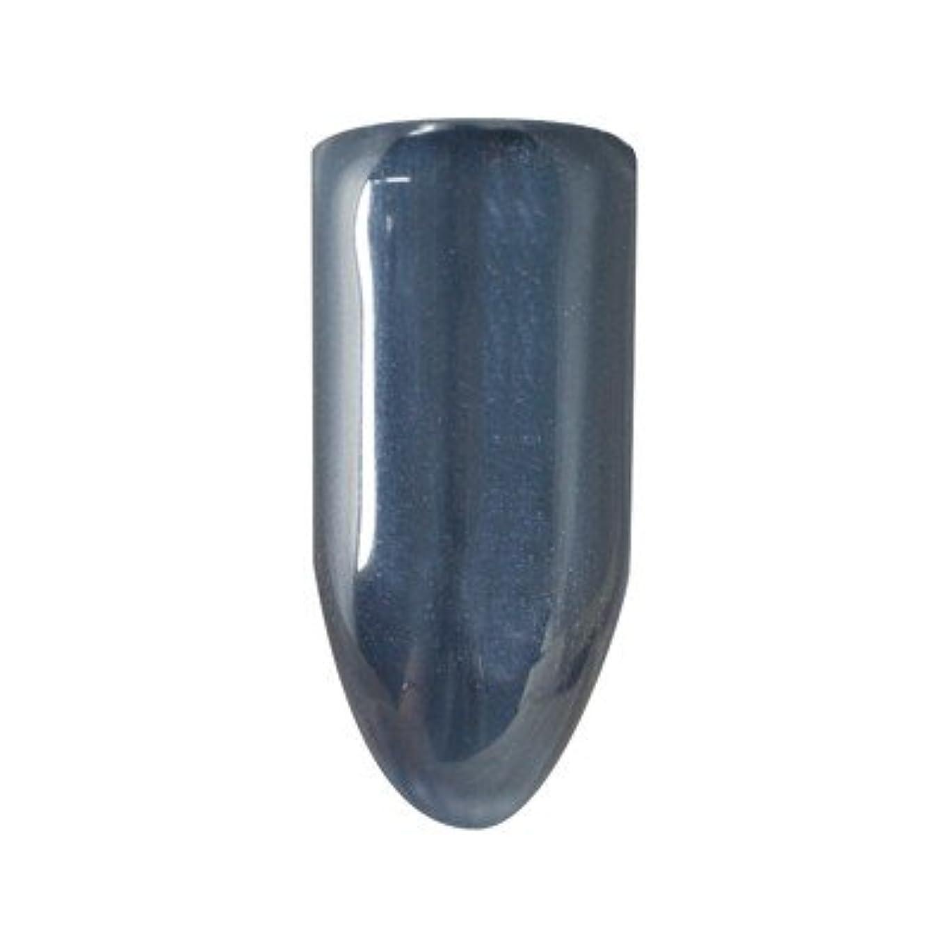 セージ不振デュアルバイオスカルプチュアジェル カラージェル 127 ヴィクトりアフォールズ K 4.5g