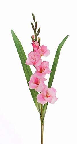 artplants.de Set de 12 x Gladiolo Artificial ELEA, Rosa, 85cm, Ø 3-10cm – Conjunto de gladiolos – Pack de Flores…