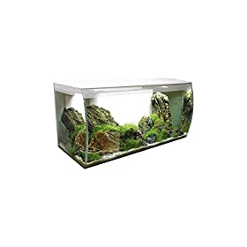 Fluval Flex Aquarium 123l Weiß